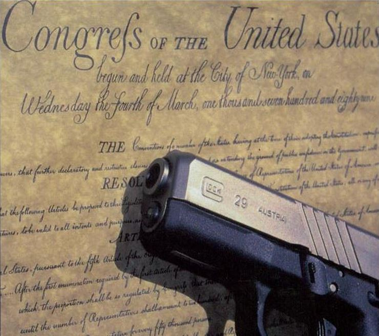 ConstitutionGun11